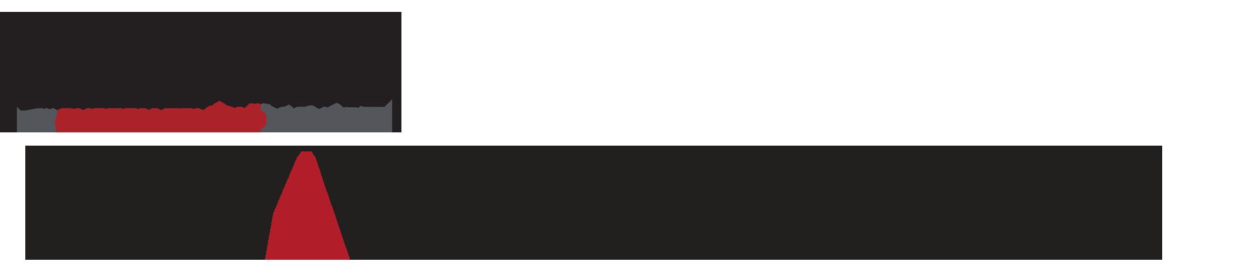 LK Voyager Series Logo2